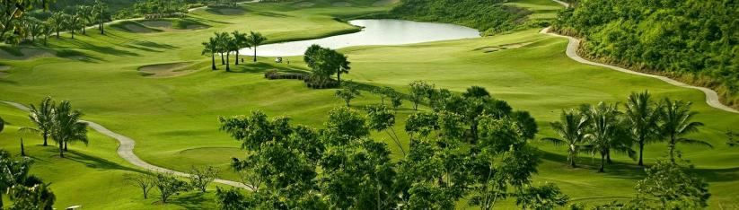 Four Points by Sheraton Caguas Real Hotel & Casino - Golf Course